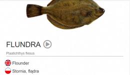 fiskaburið