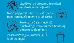 koronaveira_plakat_islenska